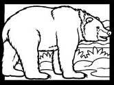 Mammals of India: bear coloring pages