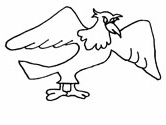 American bald eagle coloring page