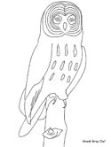 great gray owl coloring page