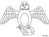 bald eagle with fish coloring page
