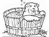 dog bath coloring page