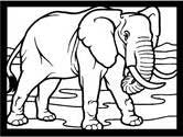 Mammals of India: elephant coloring pages