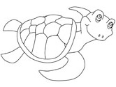 sea turtle animals coloring page