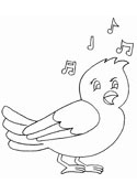 song bird coloring page