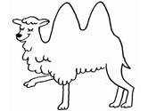 Mammals of India: camel coloring page2
