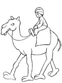 camel with rider coloring page