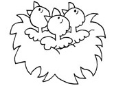 Chicks coloring page
