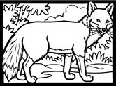Inuit animals: fox coloring page