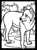 Mammals of Hungary: wolf coloring page