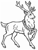 mammals of Russia - reindeer coloring page