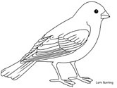 lark bunting coloring page