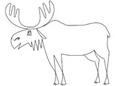 moose coloring page