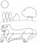 Mammals of Hungary: otter coloring page