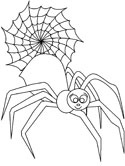 spider coloring page