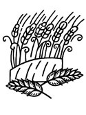 wheat coloring page