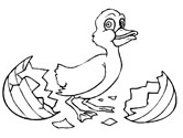 Easter duckling coloring page