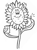 autumn sunflower coloring page