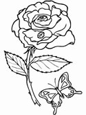 butterfly and a rose coloring page