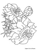 Saguaro Cactus Blossom coloring page