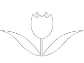 Dutch tulip coloring page